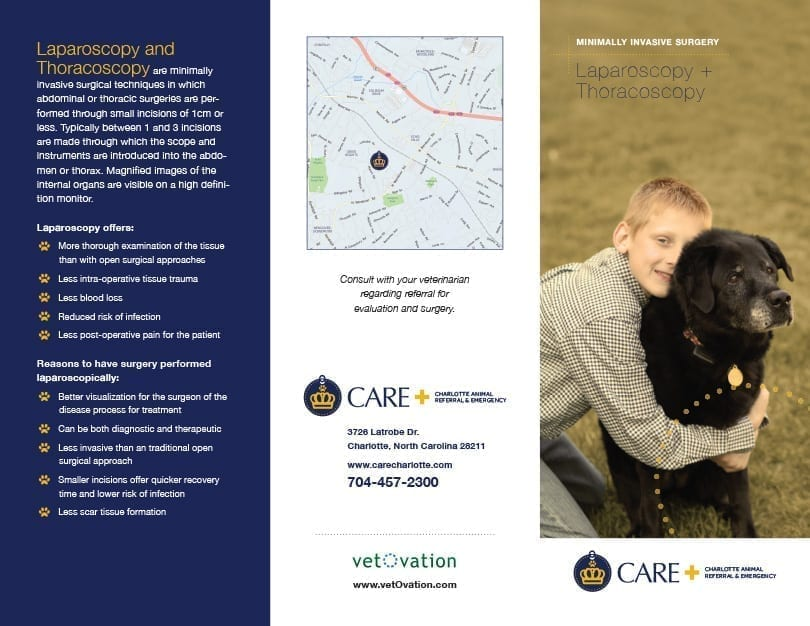 Lap Thoracoscopy brochure