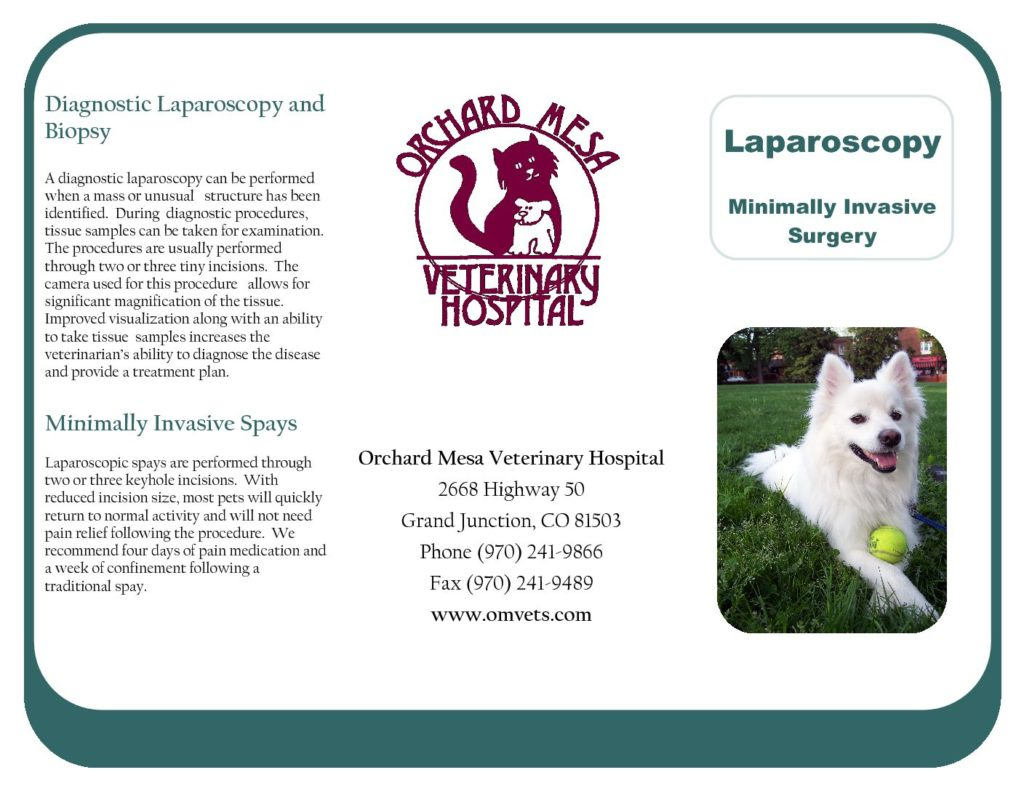 Laparoscopy Brochure
