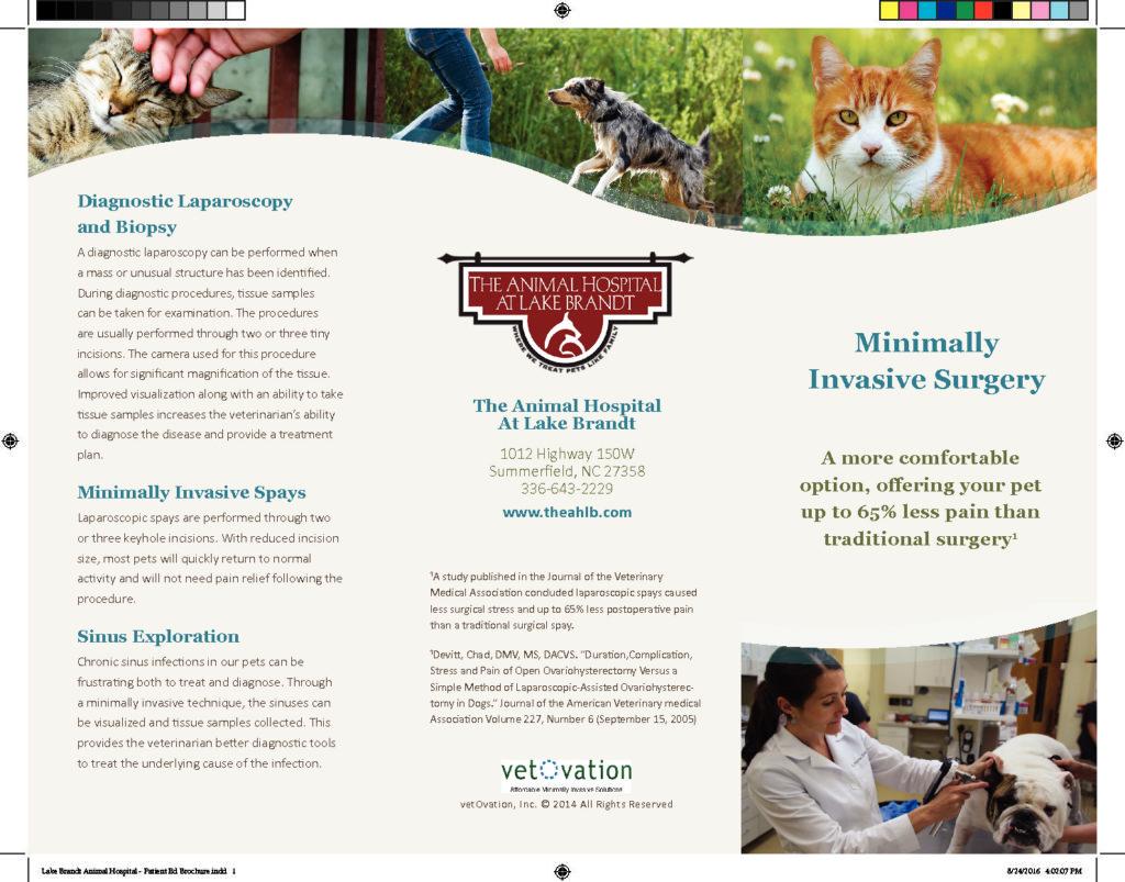 Minimally Invasive Surgery Brochure